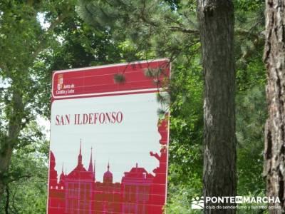 Ruta senderismo Peñalara - La Granja de San Ildefonso; rutas fin de semana largo